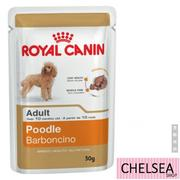 【皇家】ROYAL CANIN Poodle 貴賓狗成犬飼料(現貨)【CHELSEA SHOP】