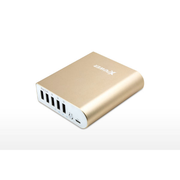 XPower PB136 13600mAh 5 port 外置充電器 金色 香港行貨