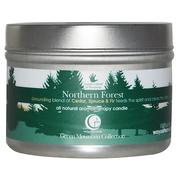 [iHerb] [iHerb] Way Out Wax All Natural Aromatherapy Candle, Northern Forest, 3 oz (85 g)