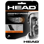 【HEAD】Perfect Power 壁球線 2入