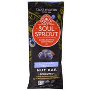 [iHerb] Two Moms in the Raw, Soul Sprout, Blueberry Burst Nut Bar, 1.5 oz (43 g)