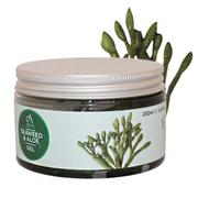 【ABSOLUTE aromas】英國海藻蘆薈凝膠Seaweed & Aloe Gel 250ml