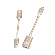 亞果元素 Adam Elements CASA F13 USB Type-C 對 USC Adapter 金色 香港行貨