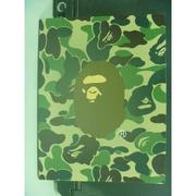 【書寶二手書T4/設計_KEH】The Story of A Bathing Ape_鄭家輝