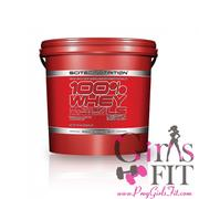 SCITEC NUTRITION 100% WHEY PROTEIN PROFESSIONAL LS紅標 職業低脂低熱量乳清 5000g(11磅)