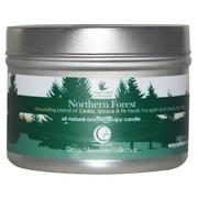 [iHerb] Way Out Wax, All Natural Aromatherapy Candle, Northern Forest, 3 oz (85 g)
