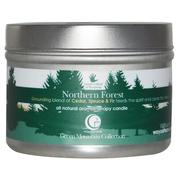Way Out Wax, All Natural Aromatherapy Candle, Northern Forest, 3 oz (85 g)