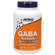 Now Foods, GABA,純粉,6 oz (170 g)