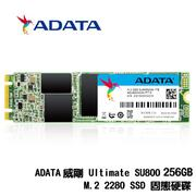 ADATA 威剛 Ultimate SU800 256GB/512GB M.2 2280 SATA SSD 固態硬碟