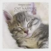 Cat Napping: A Cat's Guide to Slowing Down
