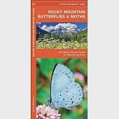 Rocky Mountain Butterflies & Moths: An Introduction to Familiar Species