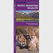 Rocky Mountain Wildlife: A Folding Pocket Guide to Familiar Species