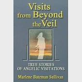 Visits from Beyond the Veil: True Stories of Angelic Visitations