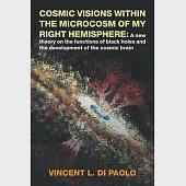 Cosmic Visions Within the Microcosm of My Right Hemisphere: A New Theory on the Functions of Black Holes and the Development of
