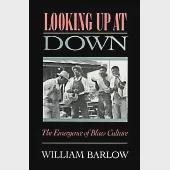 Looking Up at Down: The Emergence of Blues Culture